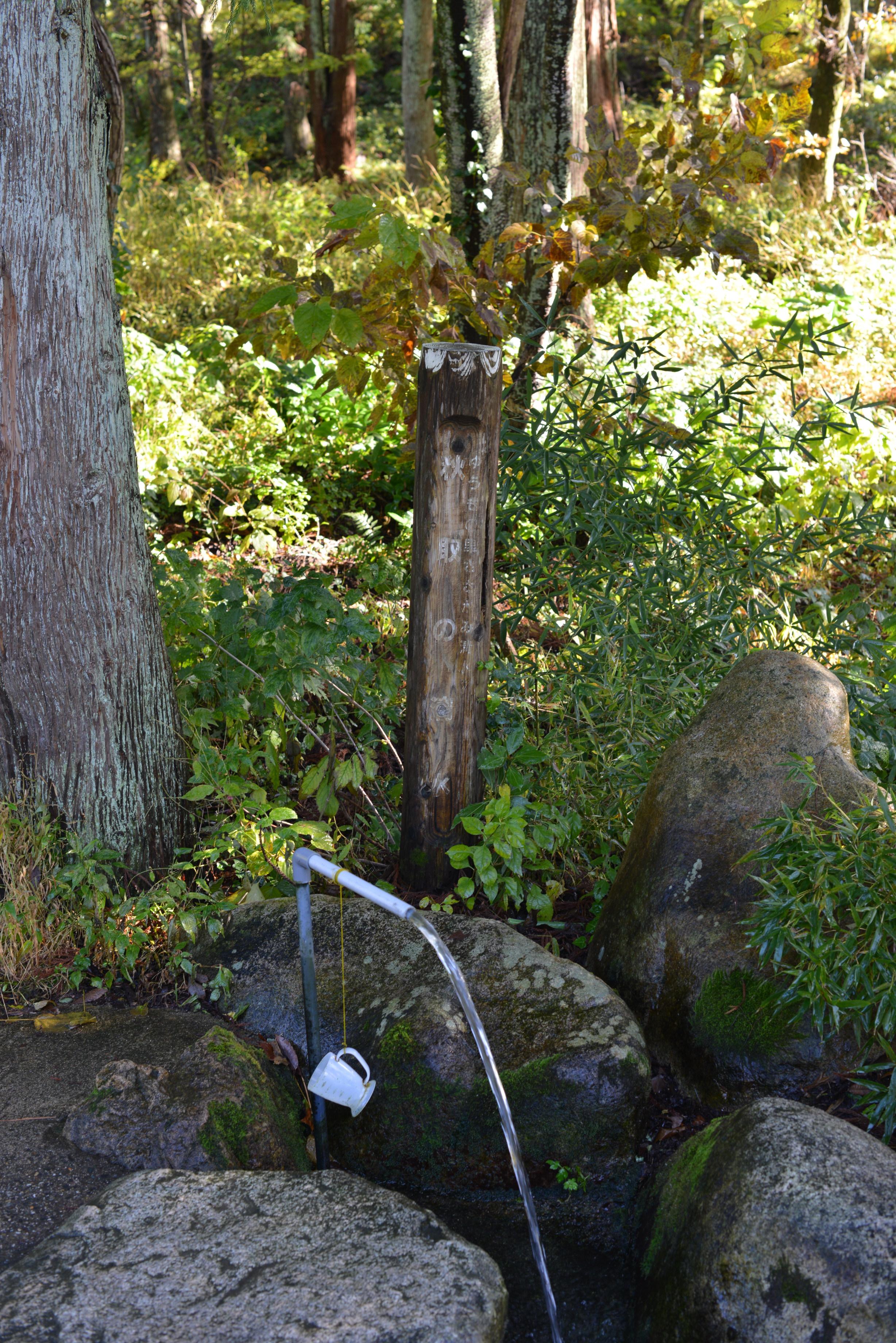 秋取の清水