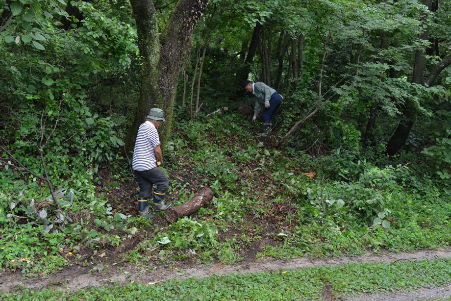 5dce027cbb4a65476f4465d6b18f215b 朽ちた丸太を移動させてました 五頭山麓いこいの森