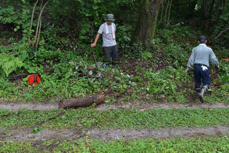 8a7e099b1894565ffc46847a810d3528 朽ちた丸太を移動させてました 五頭山麓いこいの森