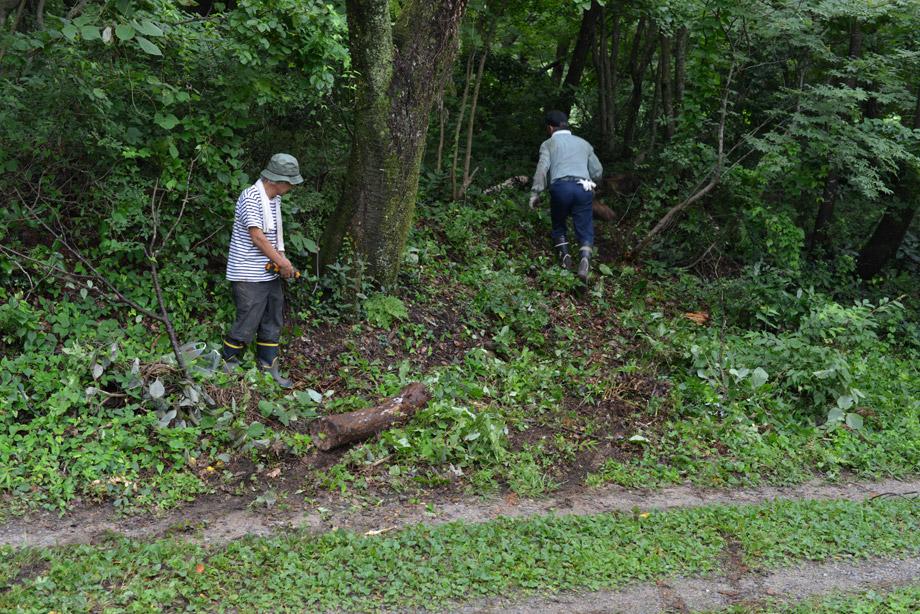 93b2d7ed366c1c82310b92bf722f1394 朽ちた丸太を移動させてました 五頭山麓いこいの森