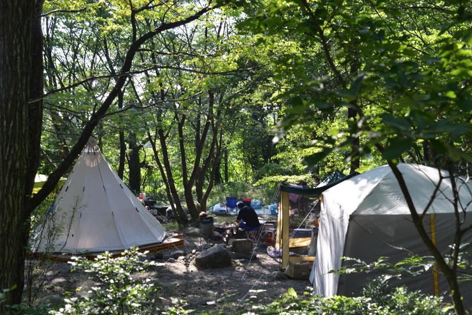 テントがいっぱい