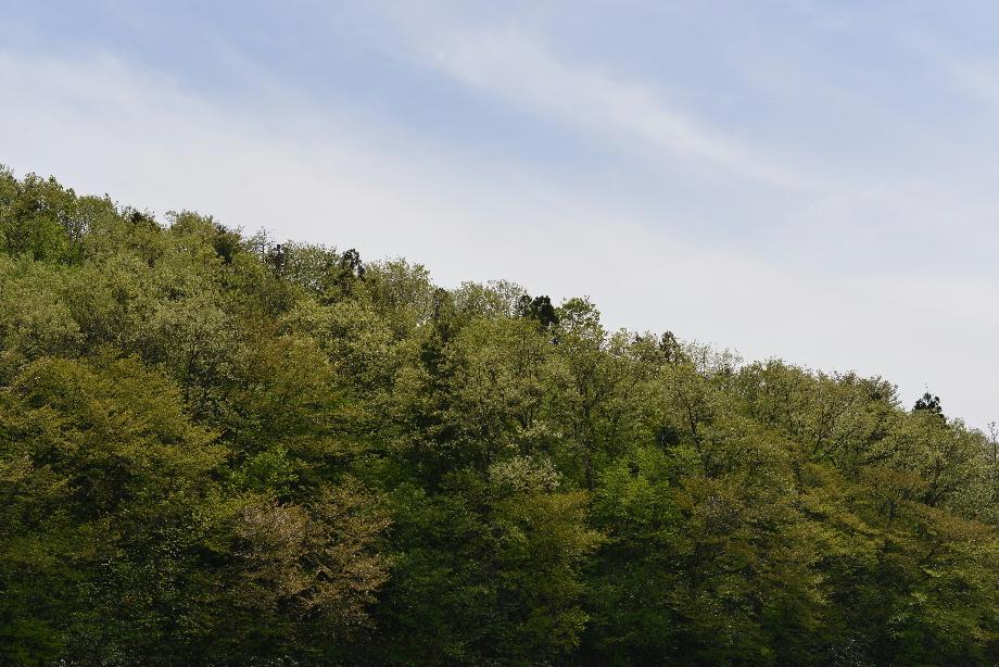 里山と青空