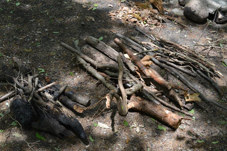 薪を拾い集める