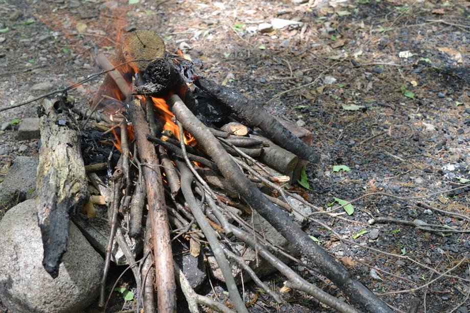 薪に火がついた状態