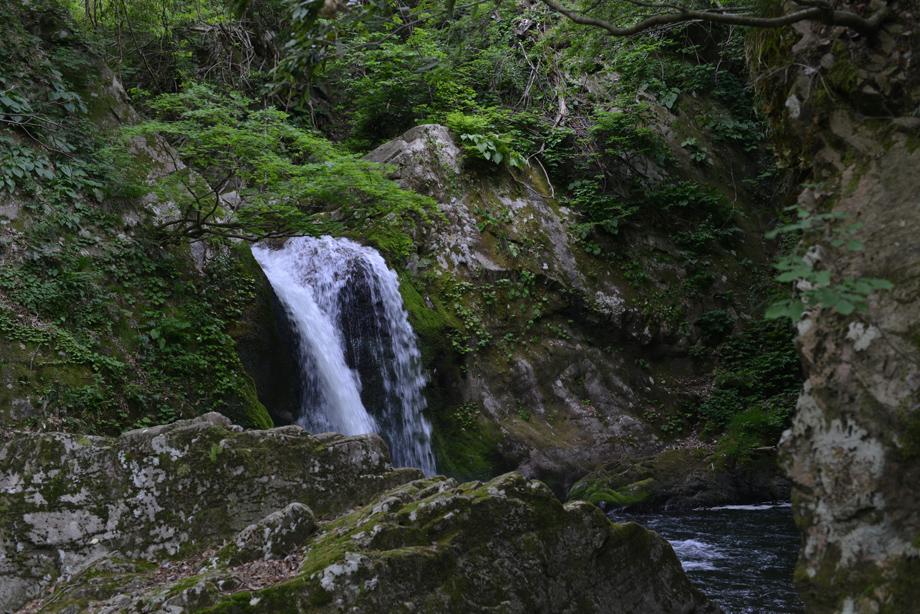 魚止めの滝20150529_03