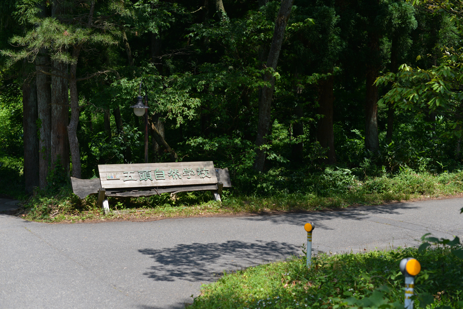 1935d4e199423ee88e685d04807eafaa 散策してみました 五頭山麓いこいの森
