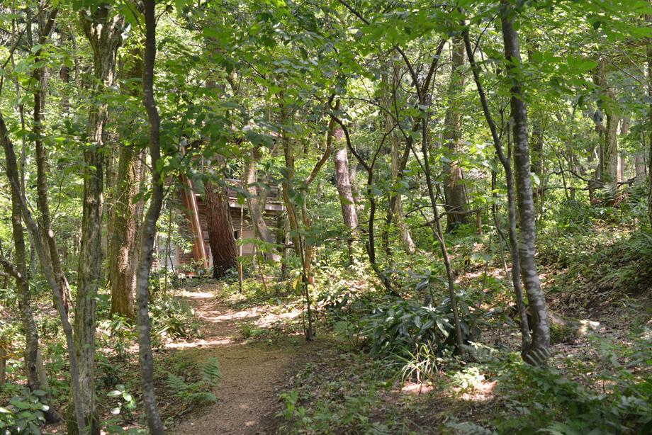 d99ae7df20e736359034196ea7ae209e 散策してみました 五頭山麓いこいの森