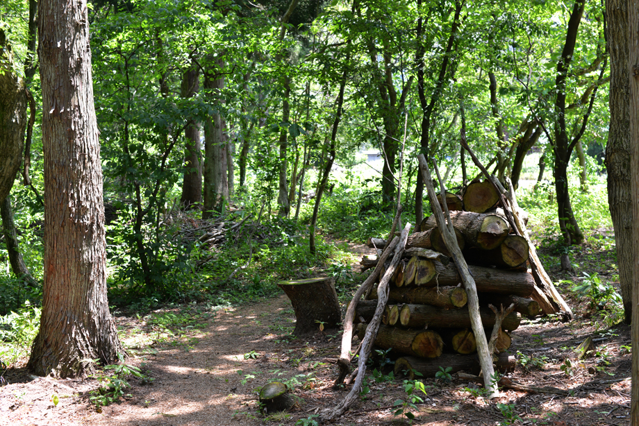 db7a828e64af356b45383cf542c98852 散策してみました 五頭山麓いこいの森