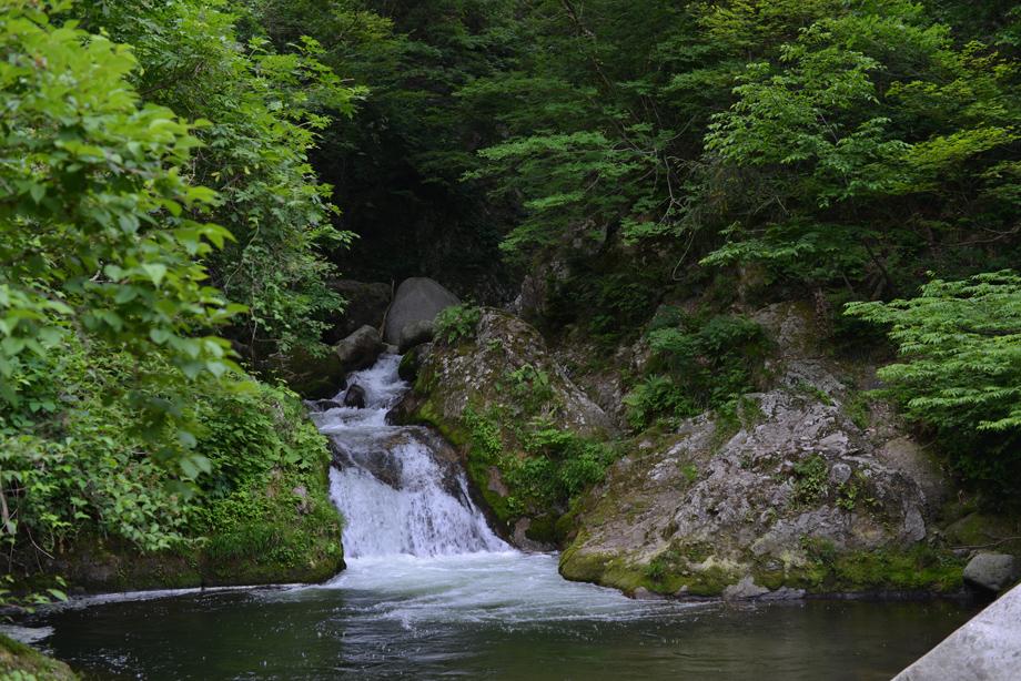 魚止めの滝20150529_02