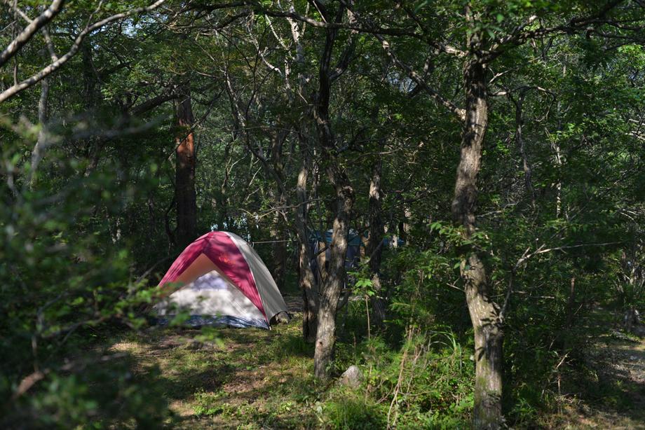 キャンプ20150801-02