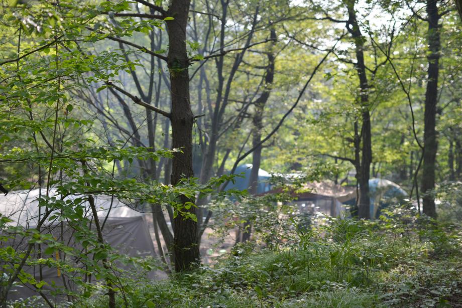 キャンプ20150801-01
