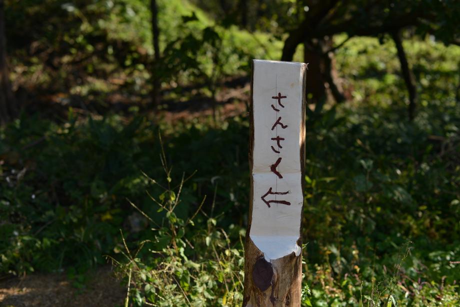 8df1722f7b4681e2c681b63d6f3faa86 秋を感じる散策に出発! 五頭山麓いこいの森