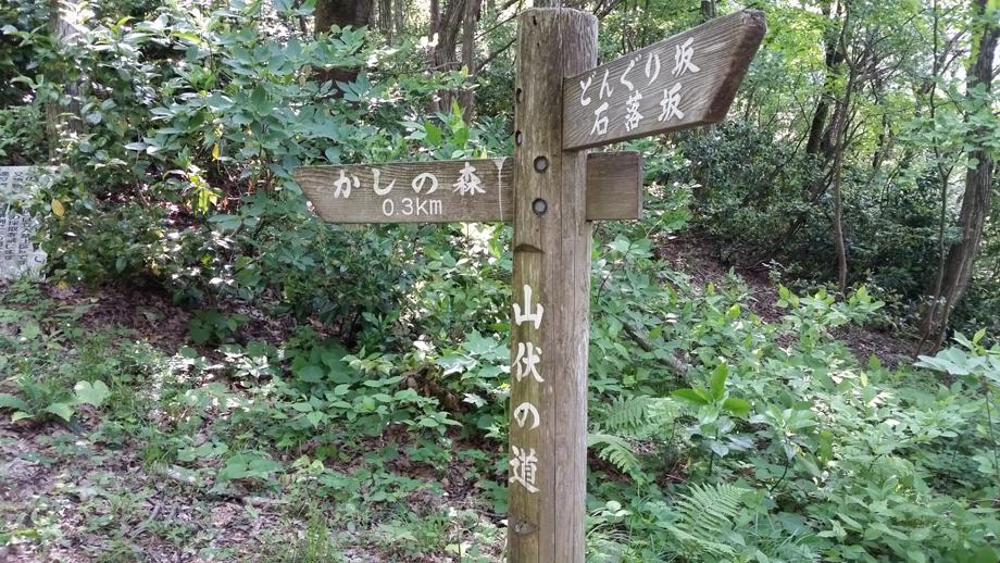 20160515_085224 癒やしを求めて新潟で温泉&山歩き 五頭山麓いこいの森