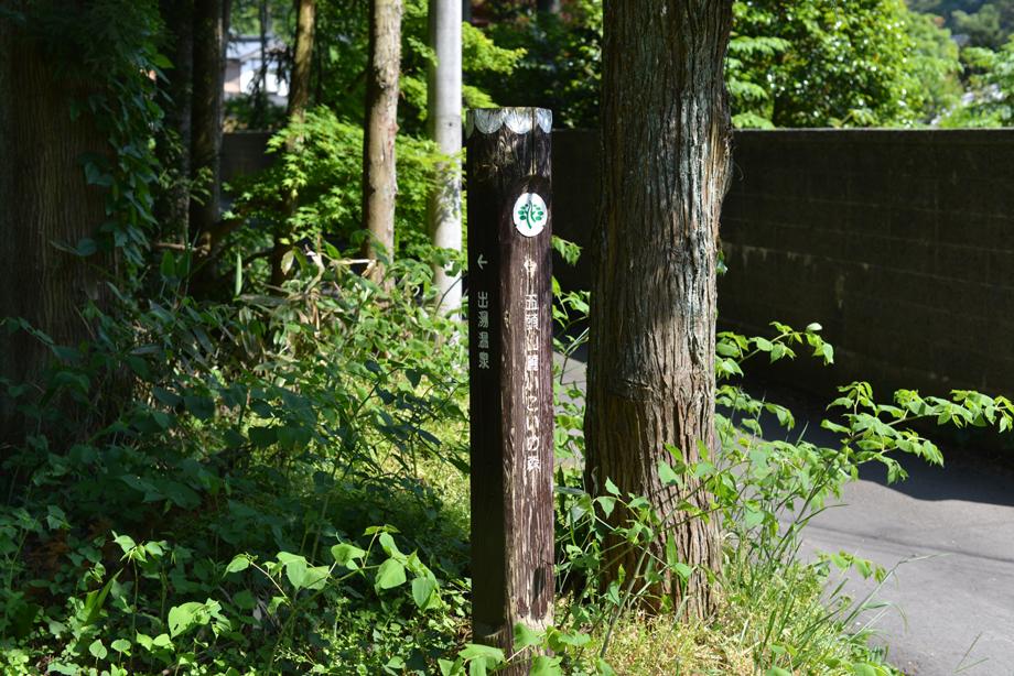 denki20170522-13 癒やしを求めて新潟で温泉&山歩き 五頭山麓いこいの森