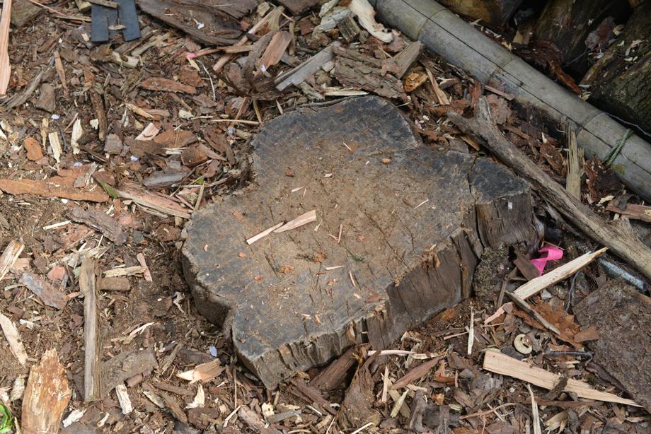 ikoi20170501-02 薪をつくることは自然とつながること 五頭山麓いこいの森