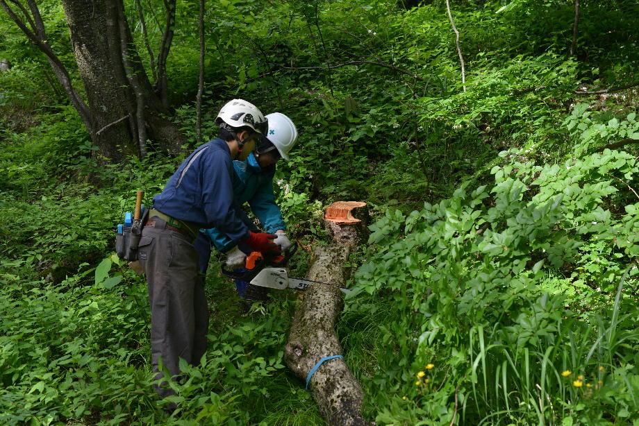 ikoi20170604-06 安全講習しました 五頭山麓いこいの森