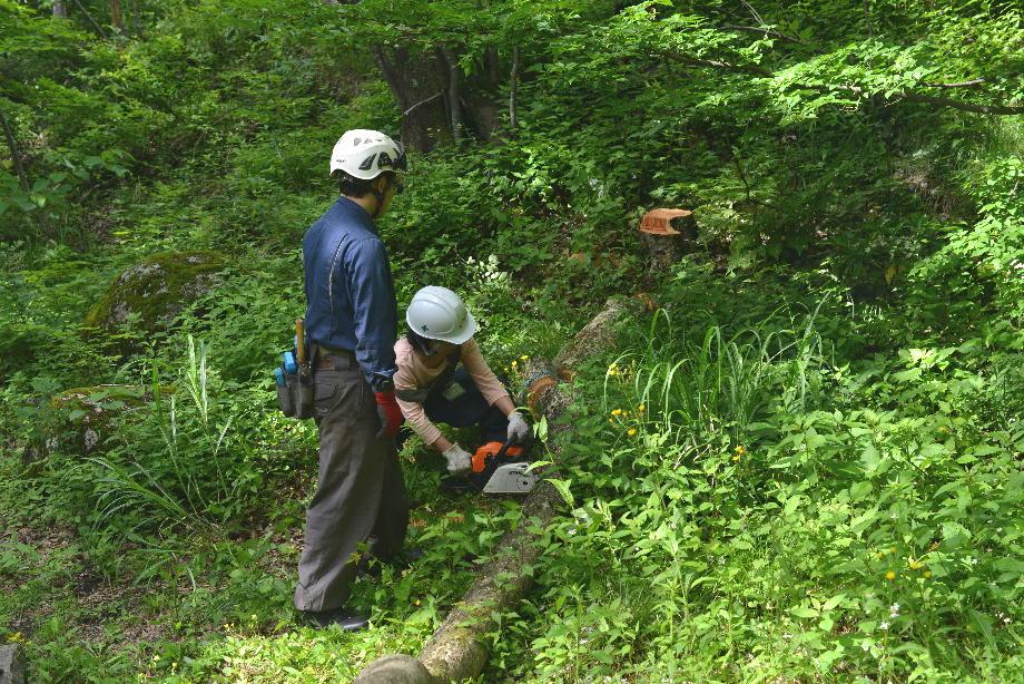 ikoi20170604-07 安全講習しました 五頭山麓いこいの森