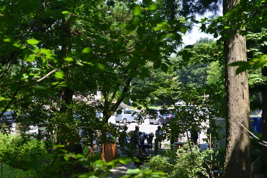 ikoi20170708-01 暑い暑い一日 五頭山麓いこいの森