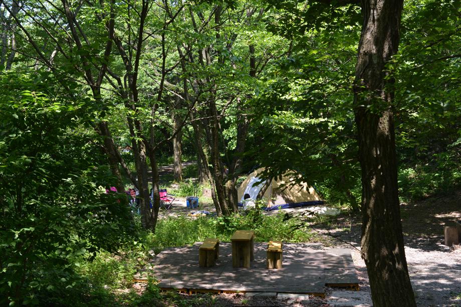 ikoi20170708-02 暑い暑い一日 五頭山麓いこいの森