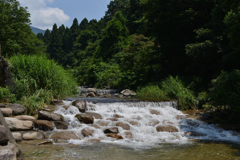 ikoi20170714-14 暑いときは川に行こう 五頭山麓いこいの森