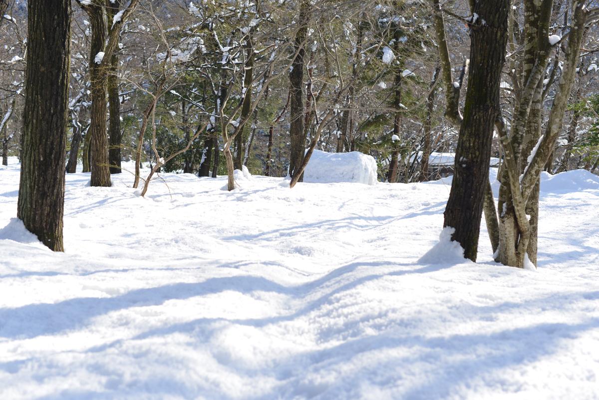ikoi20180201-05 大雪とかまくらと雪だるまと 五頭山麓いこいの森