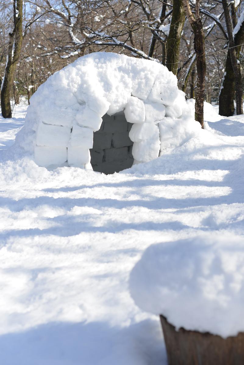ikoi20180201-07 大雪とかまくらと雪だるまと 五頭山麓いこいの森