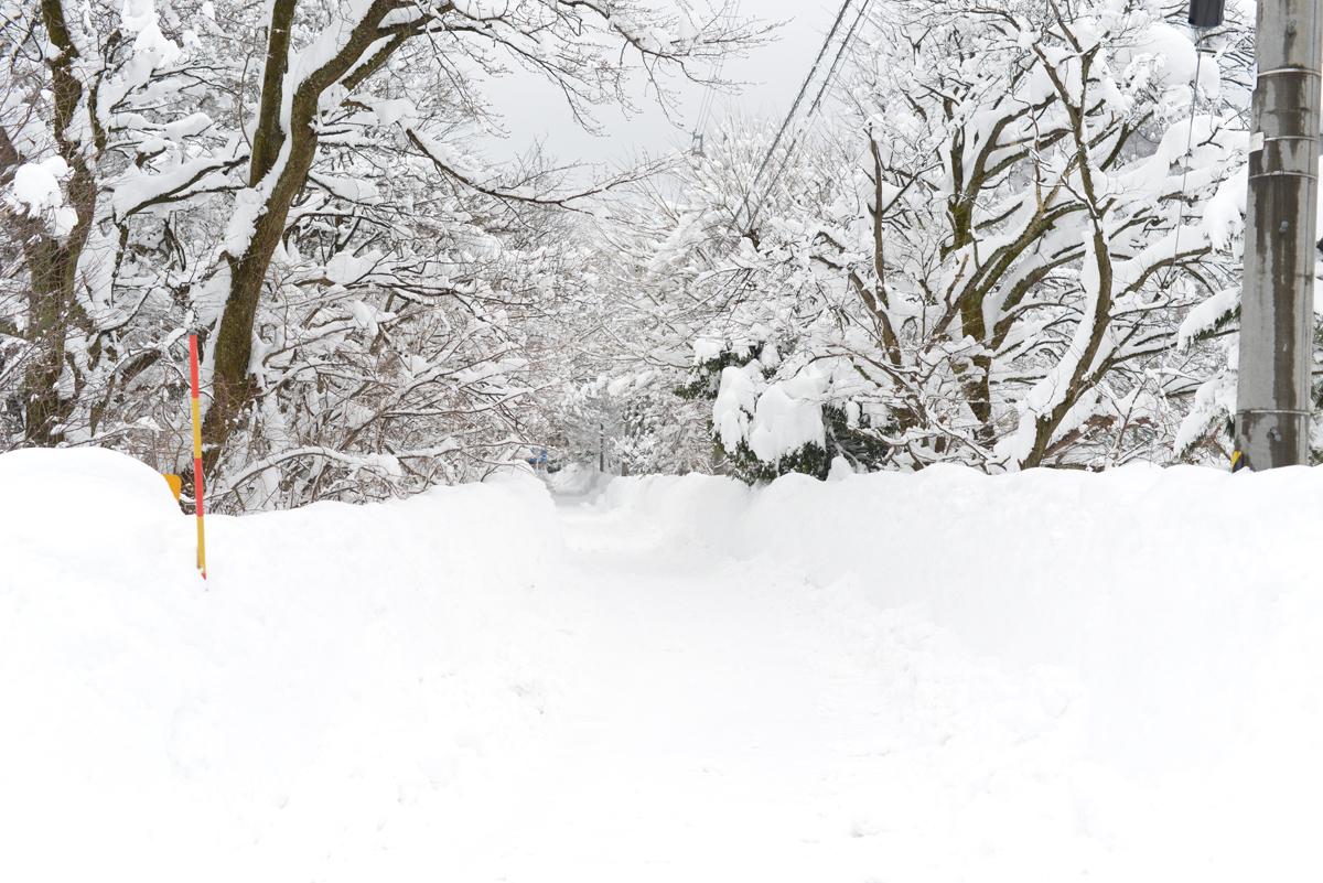 ikoi20180208-01 連続して大雪 五頭山麓いこいの森