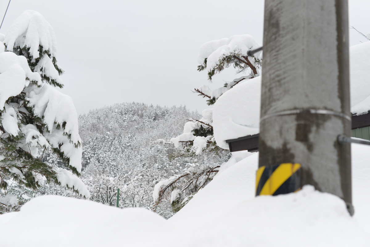 ikoi20180208-03 連続して大雪 五頭山麓いこいの森