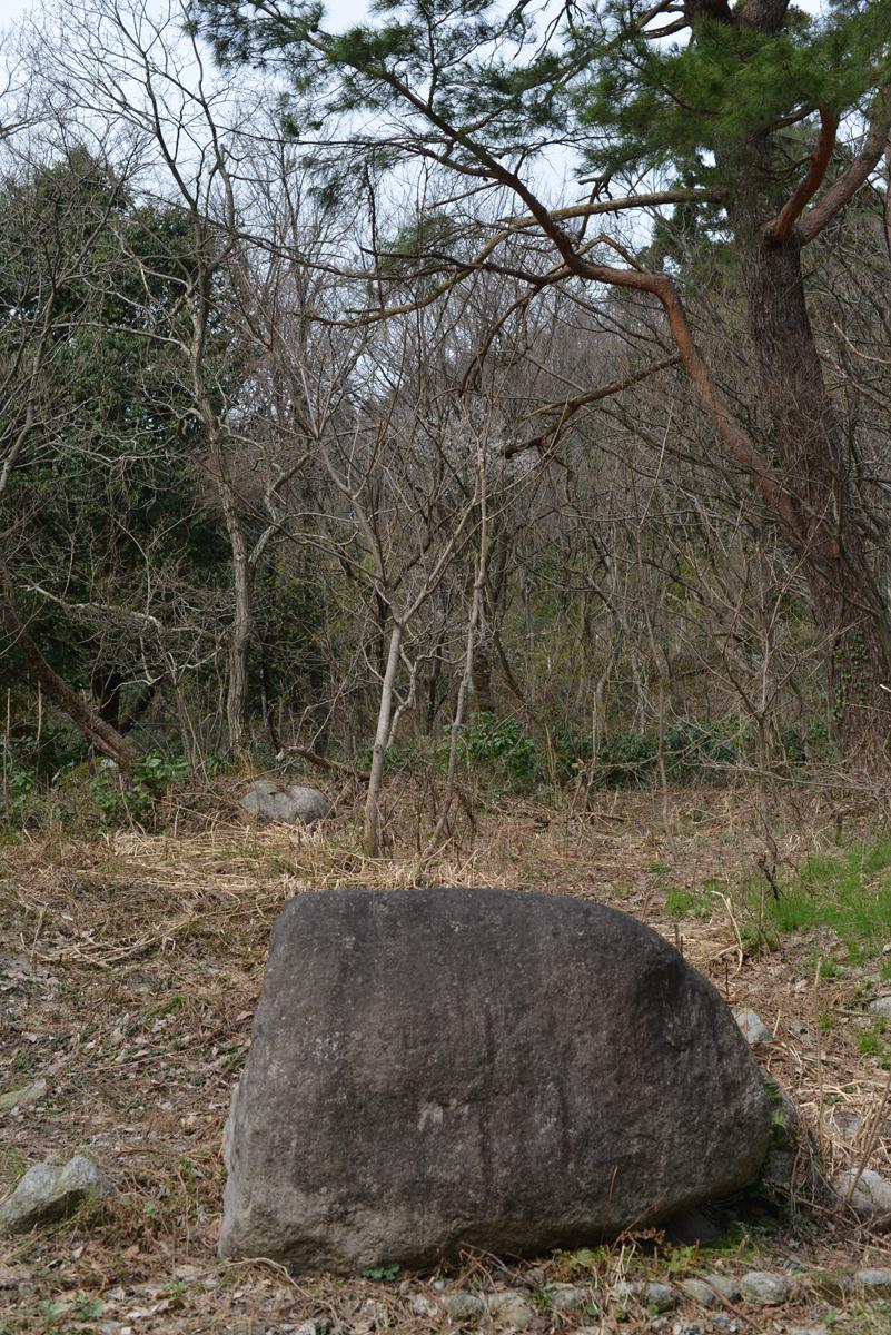 ikoi20180401-10 五頭山麓いこいの森にも春が来た 五頭山麓いこいの森
