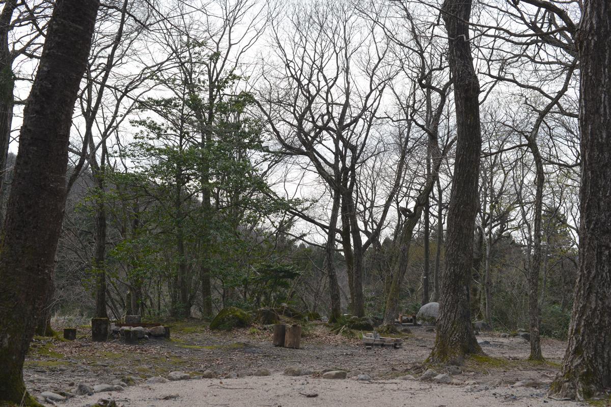 ikoi20180401-17 五頭山麓いこいの森にも春が来た 五頭山麓いこいの森