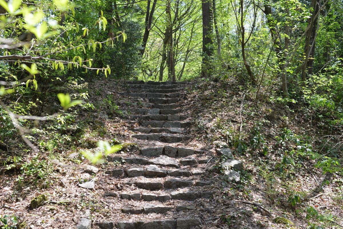 ikoi20180422-08 ゴールデンウィークを前にして賑わっています 五頭山麓いこいの森
