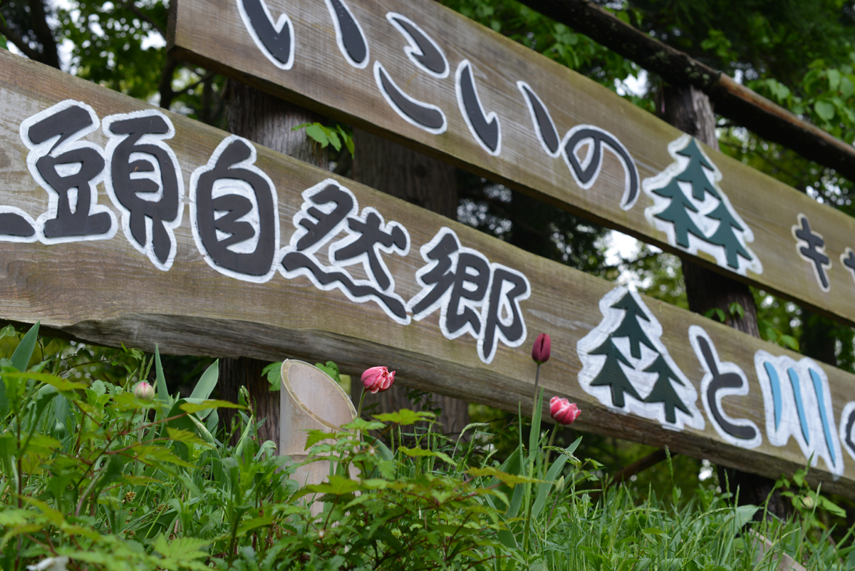 ikoi20180426-07 田起こしの準備ができるころ 五頭山麓いこいの森