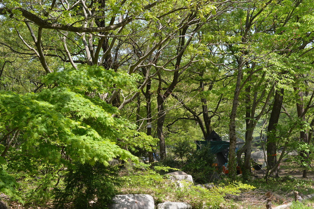 ikoi20180429-06 ゴールデンウィーク2日目の日曜日 五頭山麓いこいの森
