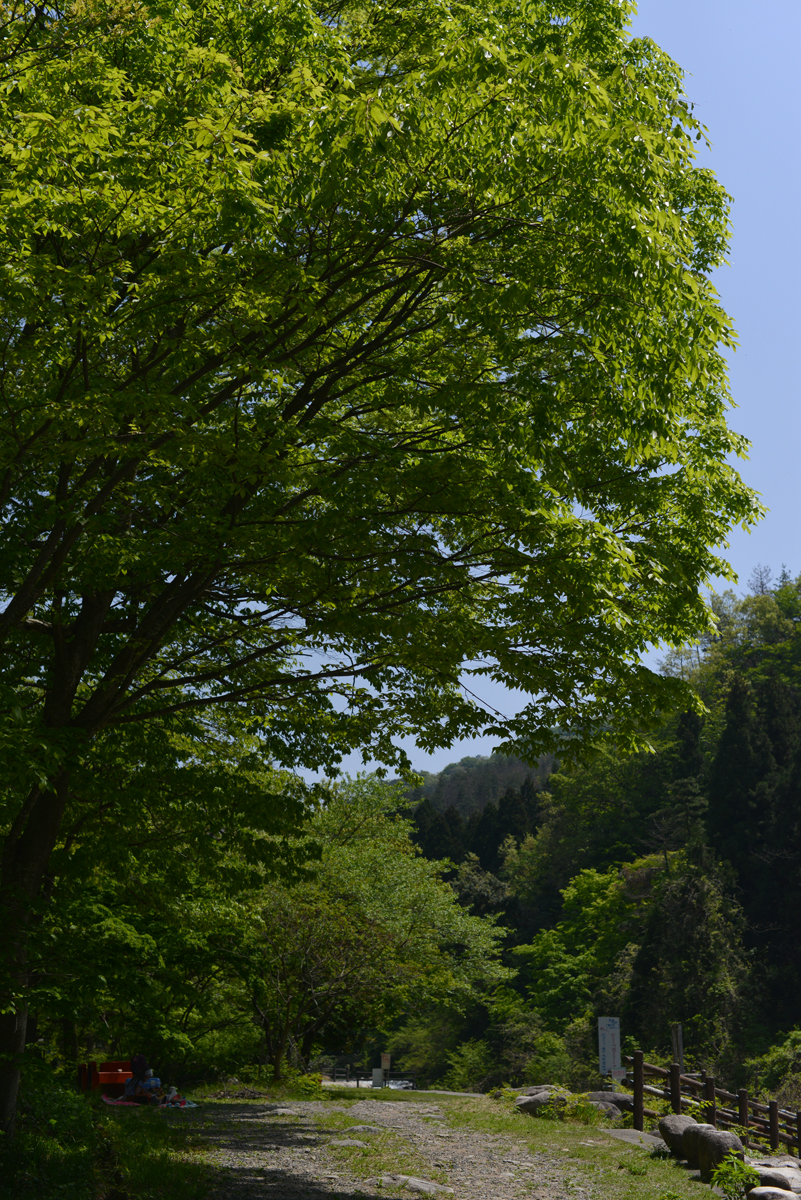 ikoi20180429-08 ゴールデンウィーク2日目の日曜日 五頭山麓いこいの森