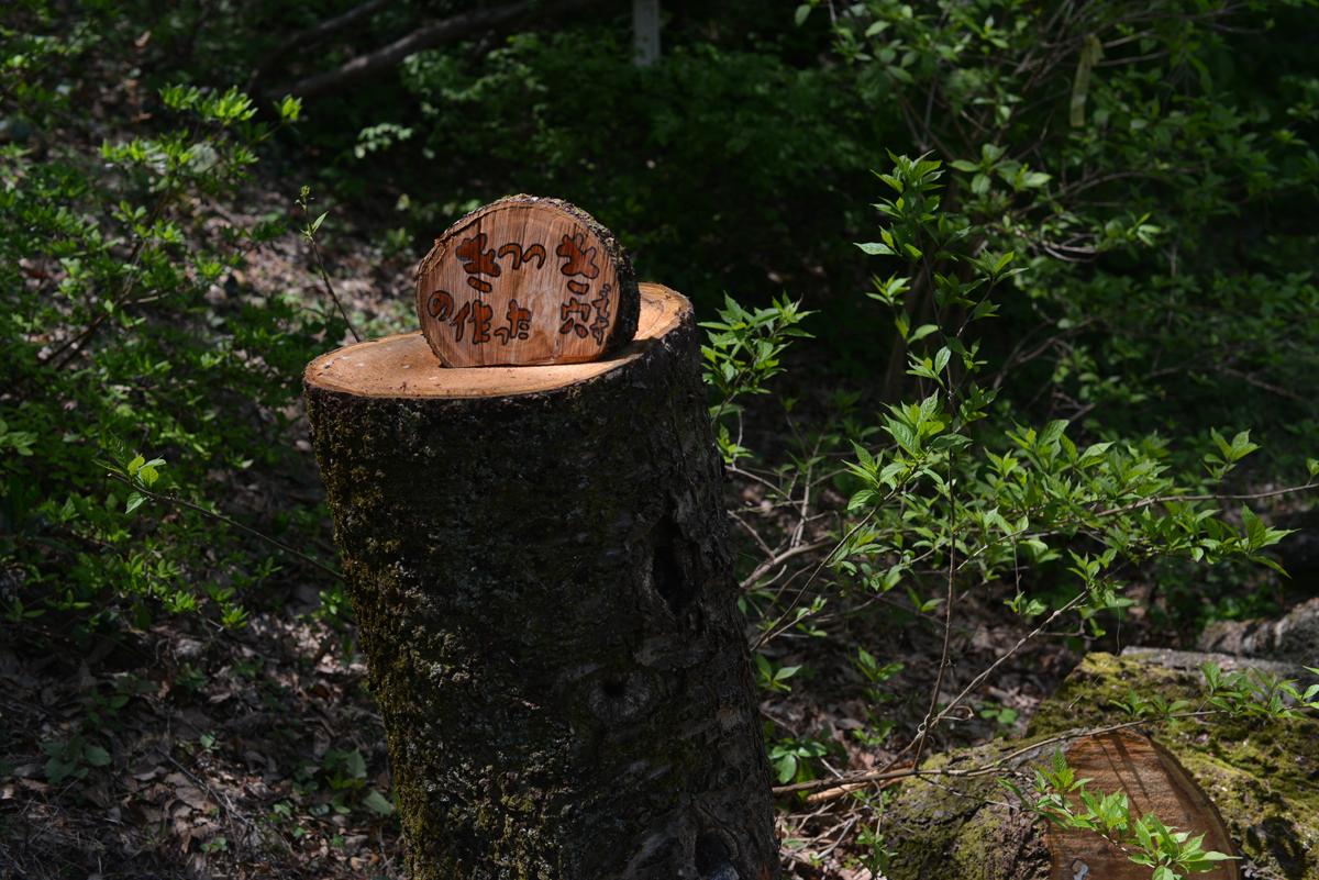 ikoi20180429-11 ゴールデンウィーク2日目の日曜日 五頭山麓いこいの森