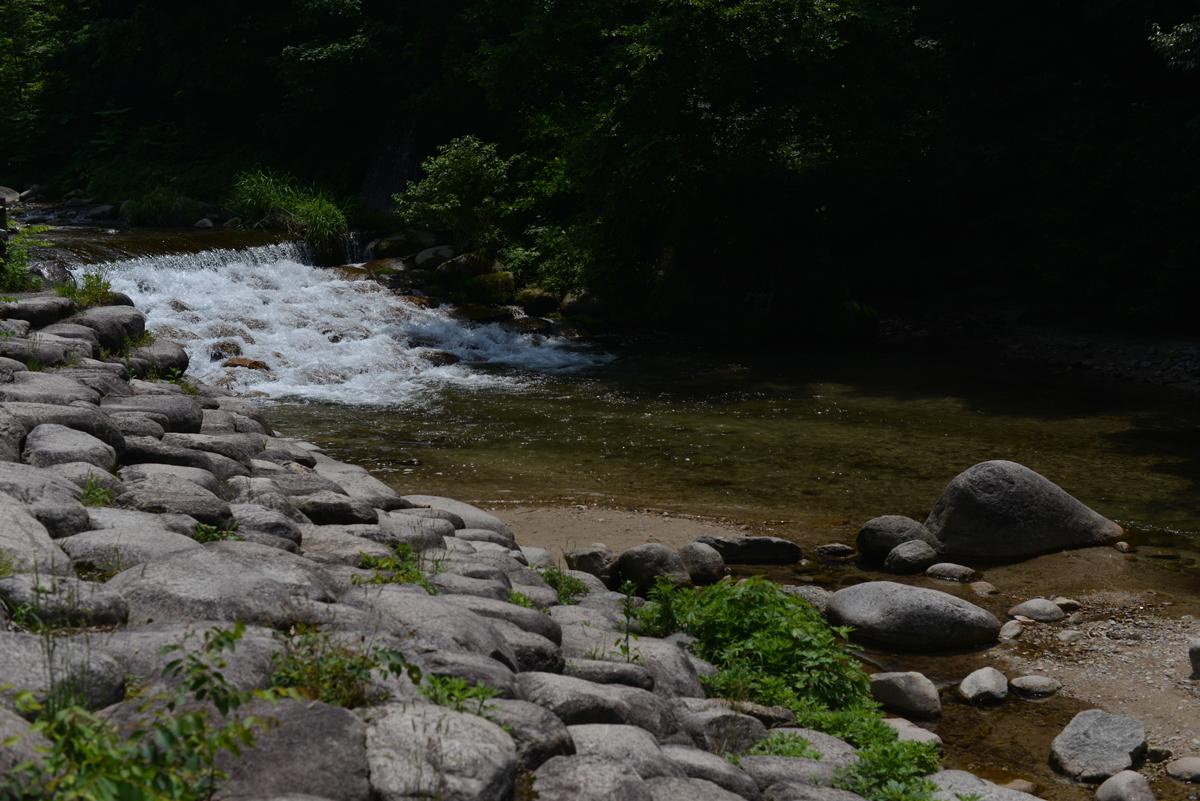 ikoi20180529-07 暑い日は川へ行きたい 五頭山麓いこいの森