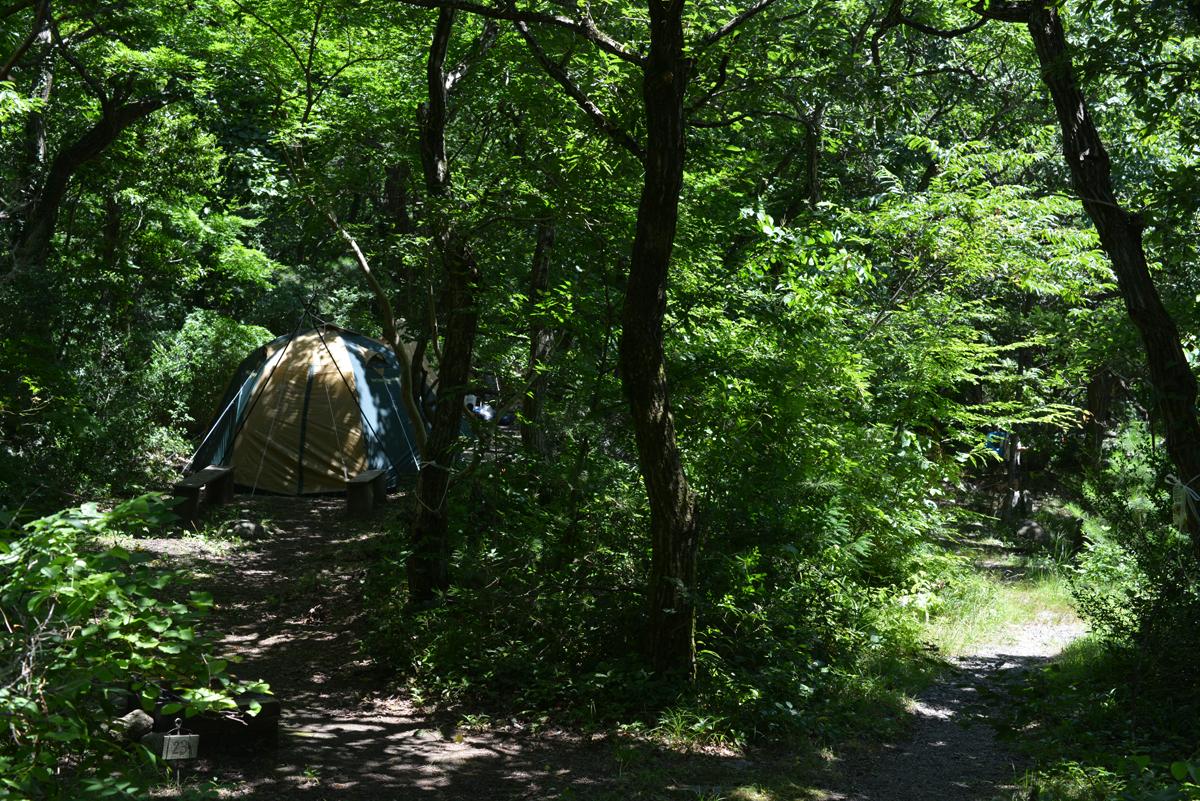 ikoi20180715-10 猛暑の三連休 五頭山麓いこいの森