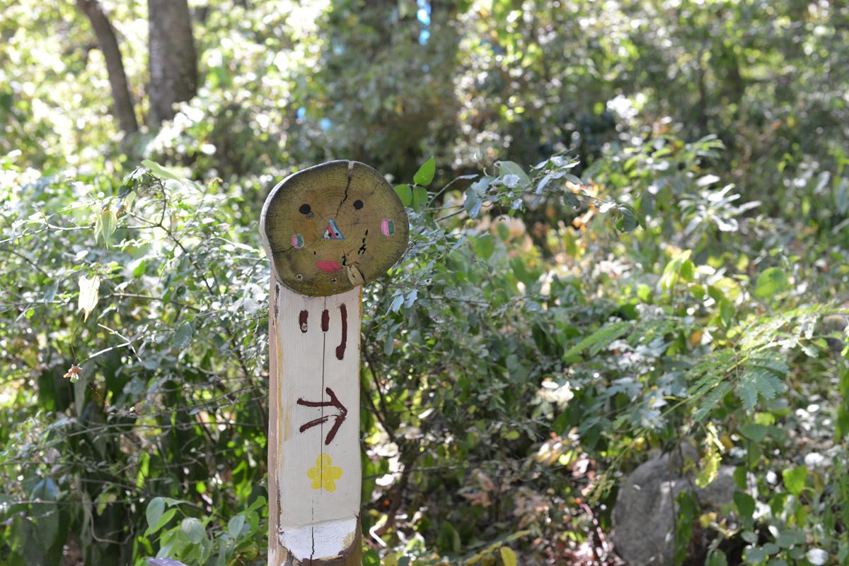 ikoi20180801-02 暑い8月1日 五頭山麓いこいの森