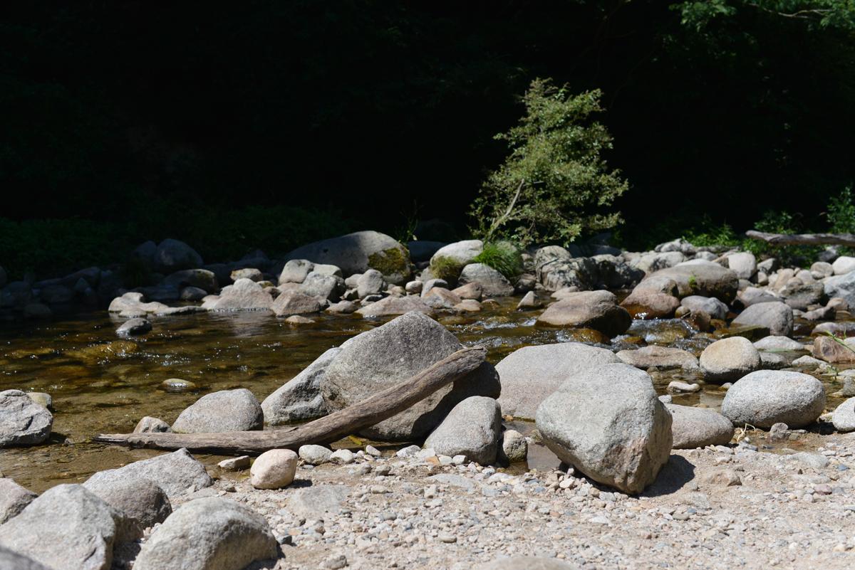 ikoi20180801-04 暑い8月1日 五頭山麓いこいの森