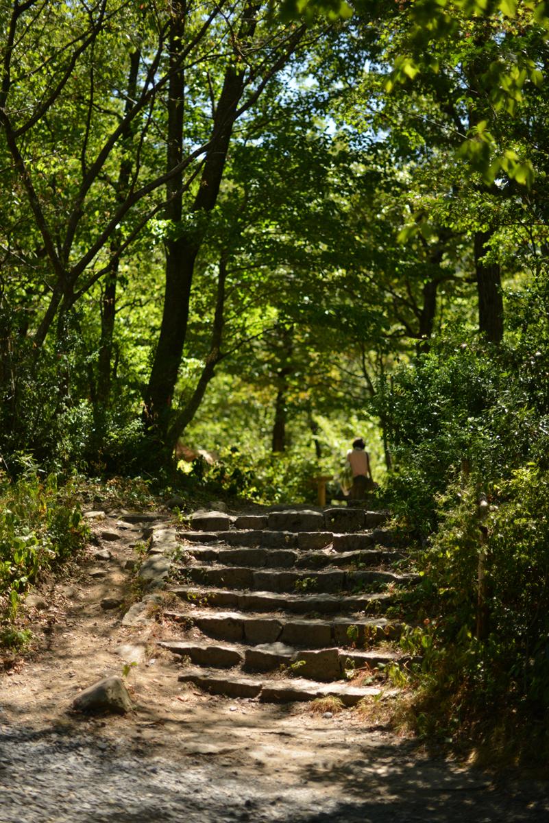 ikoi20180812-08 お盆に家族連れで賑わっています 五頭山麓いこいの森