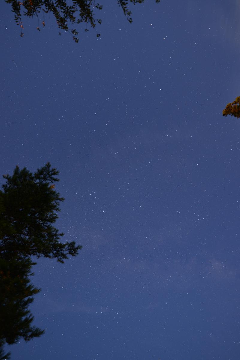 ikoi20180812-n01 ペルセウス座流星群が見えるかな 五頭山麓いこいの森