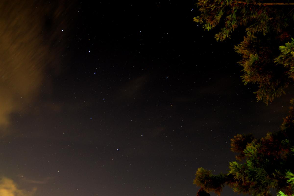 ikoi20180812-n05 ペルセウス座流星群が見えるかな 五頭山麓いこいの森