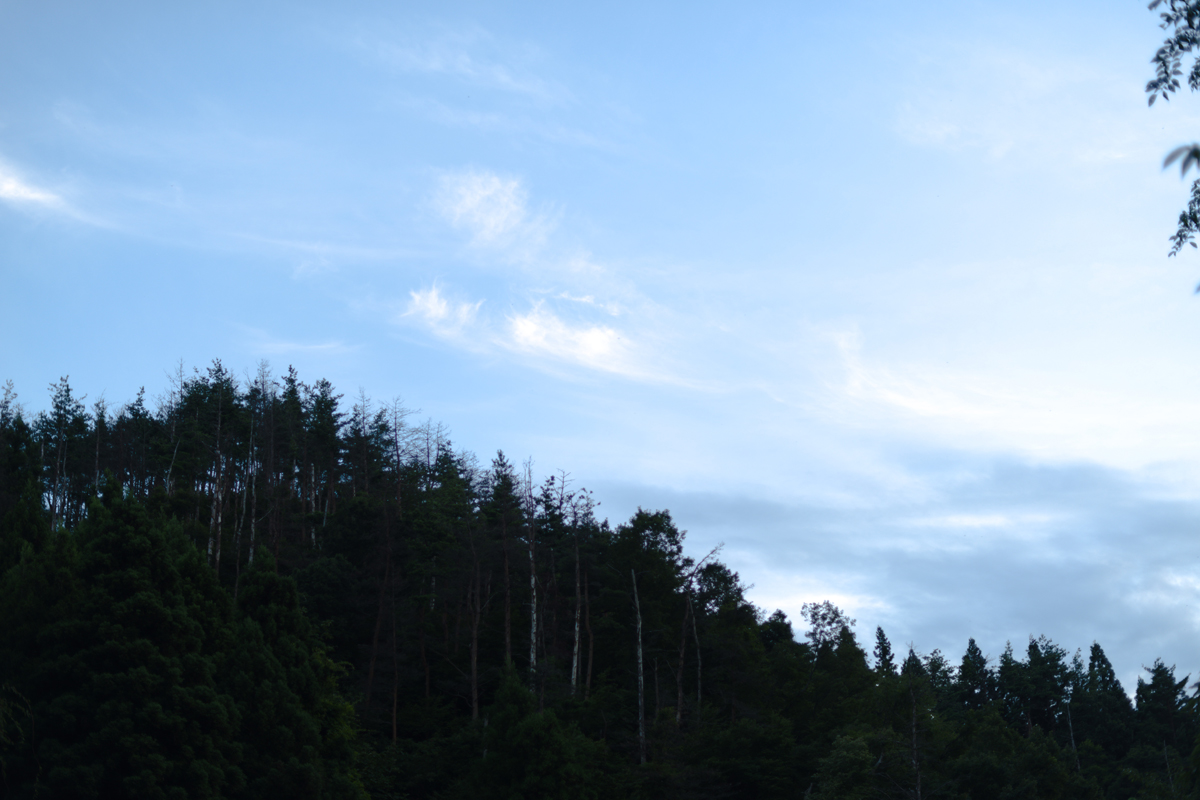ikoi20180820-03 夕方の空がきれい 五頭山麓いこいの森