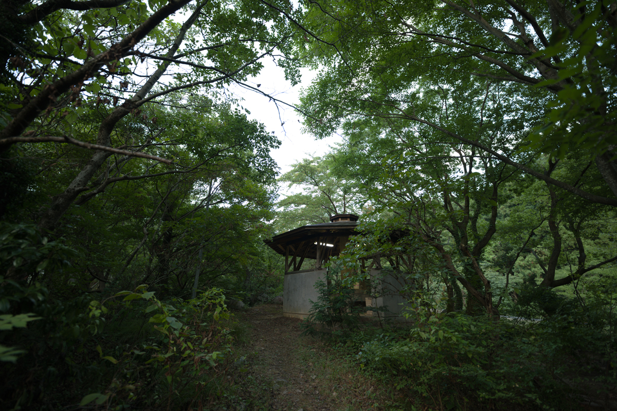 ikoi20180820-06 夕方の空がきれい 五頭山麓いこいの森