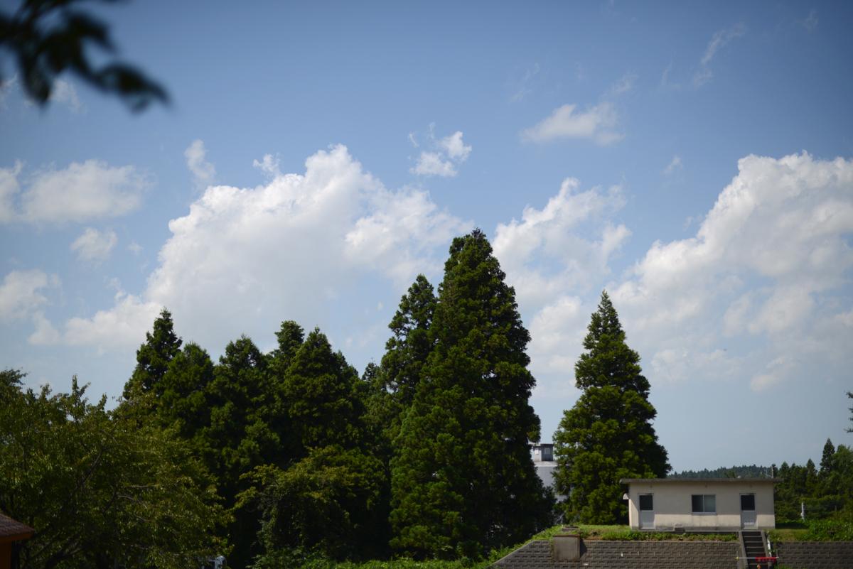 ikoi20180906-01 台風が通り過ぎて蒸し暑い 五頭山麓いこいの森
