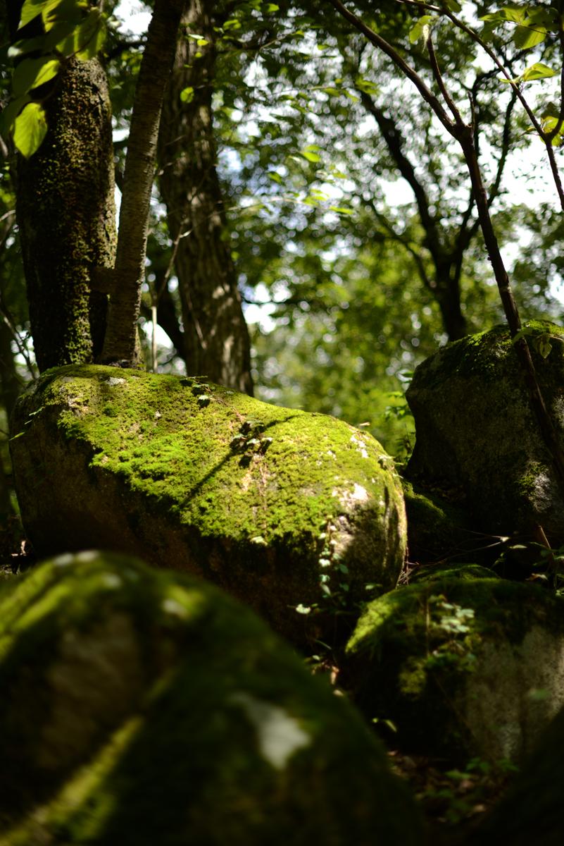 ikoi20180914-02 のんびり過ごす秋の休日の過ごし方 五頭山麓いこいの森