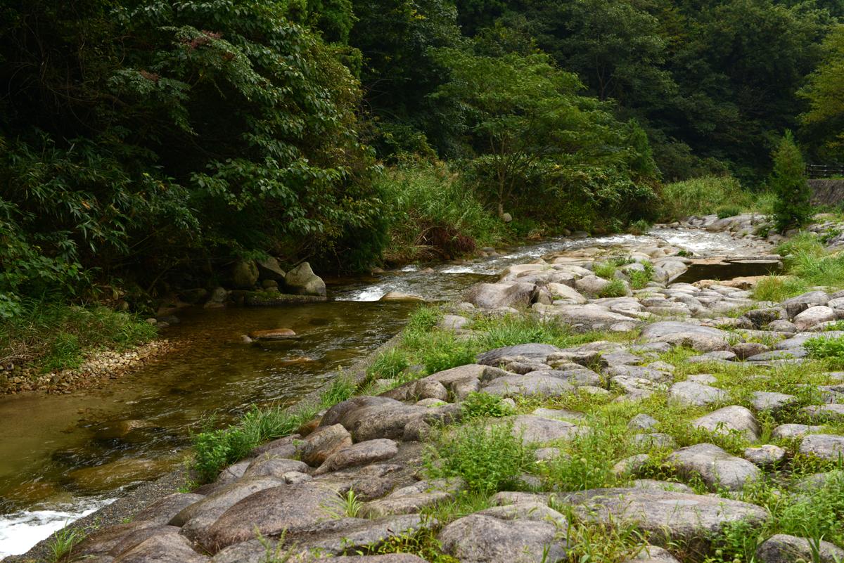 ikoi20180929-07 台風の前、雨の中 五頭山麓いこいの森