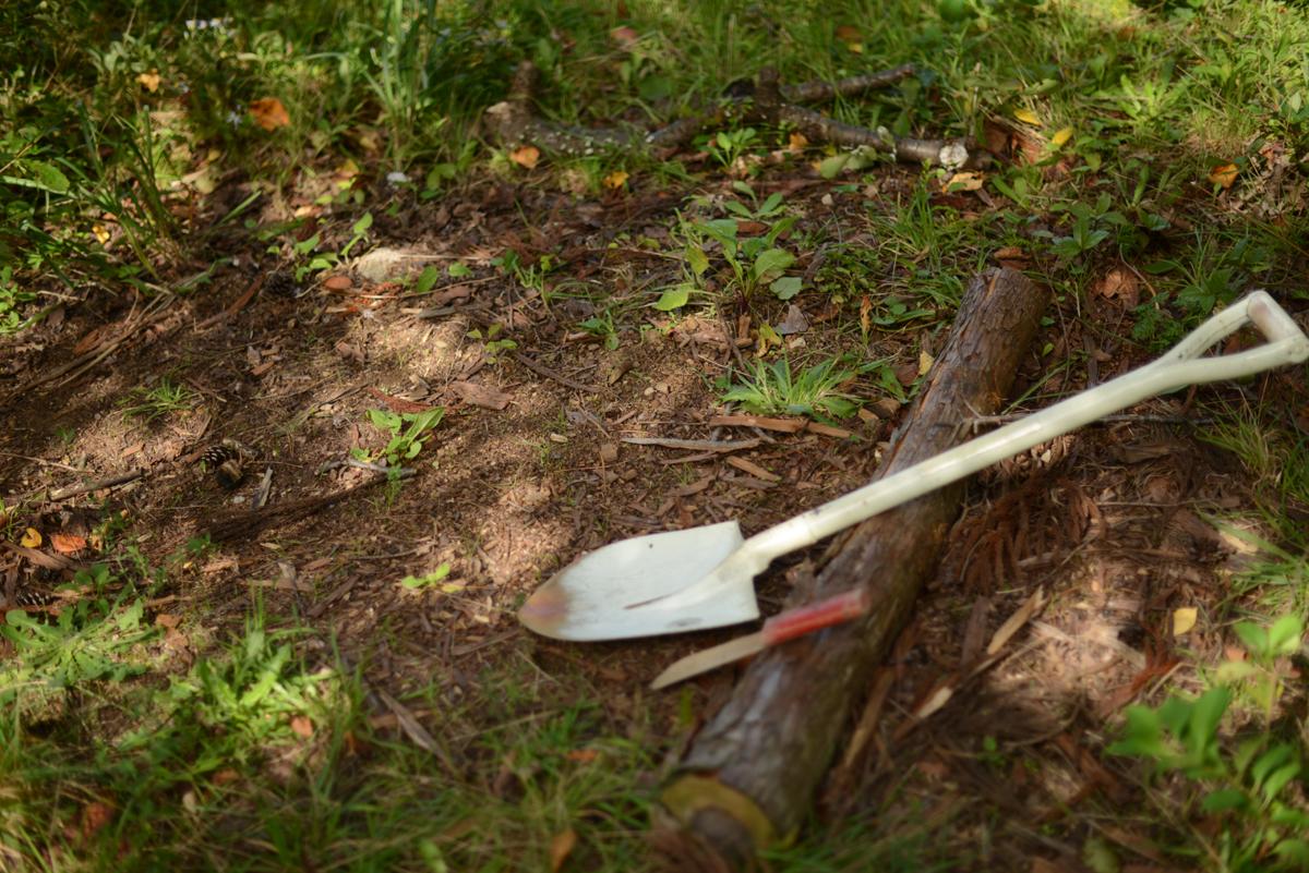 ikoi20181005-07 樹木医さんがやってくるので土を見てみる 五頭山麓いこいの森