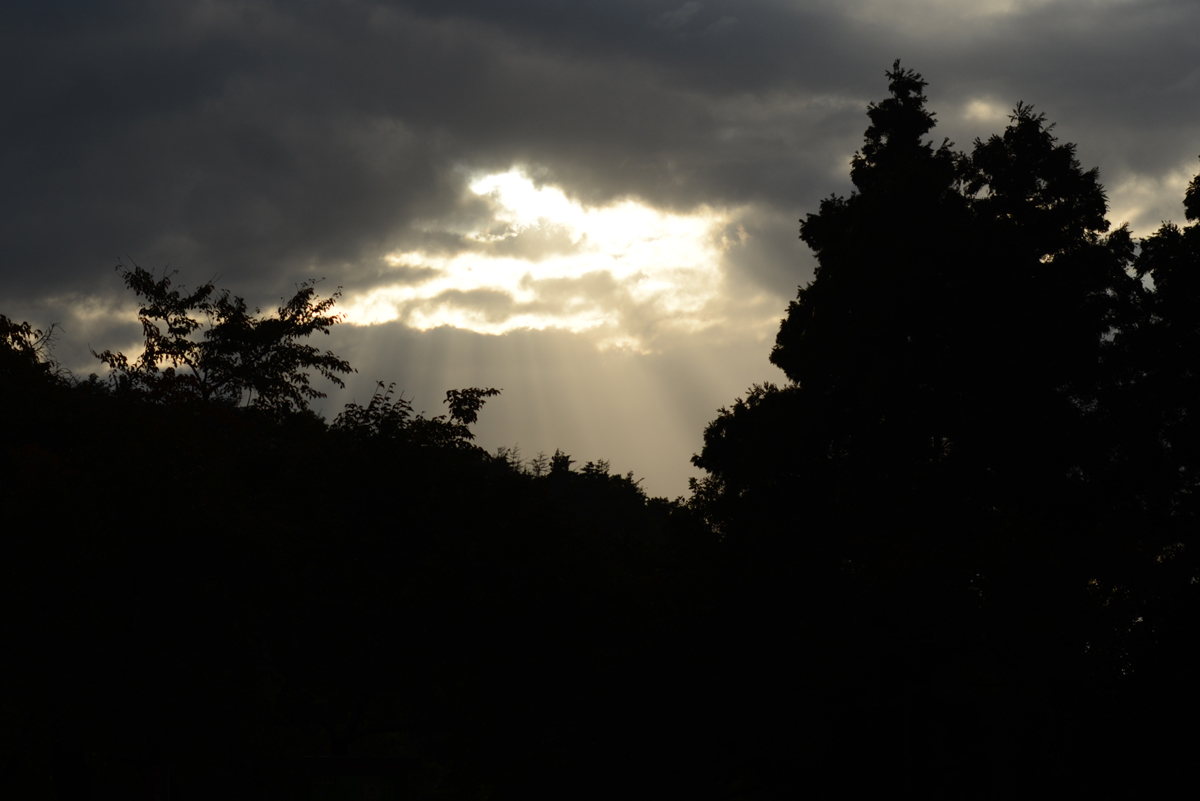 ikoi20181028-113 秋に日帰りお出かけしに行こう 五頭山麓いこいの森