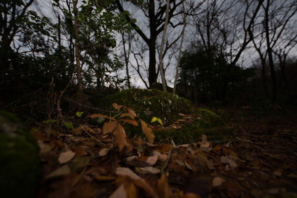 ikoi20181220-02-1024x683 森の中で捜し物 五頭山麓いこいの森